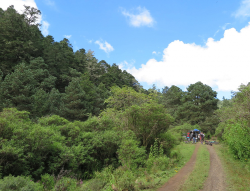 La Cumbre Ixtepeji Ecotourism and Mountain Biking Park